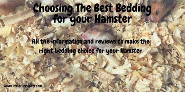 Best Hamster Bedding – All you need to know
