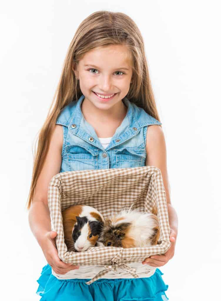 Girl with guinea pigs in basket