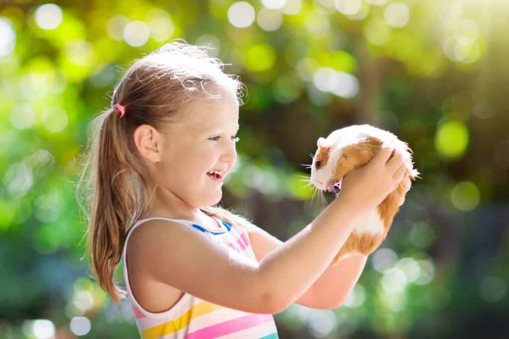 Girl smiling with her pet guinea pig