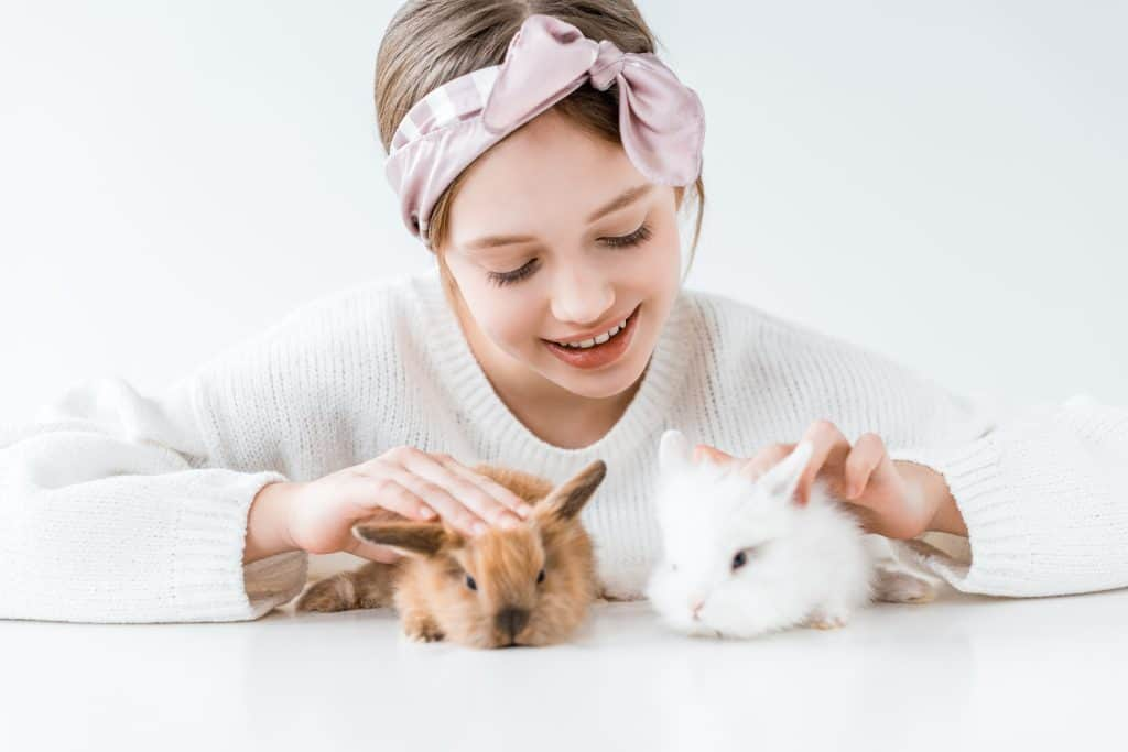 Girl playing with her cute fluffy rabbits