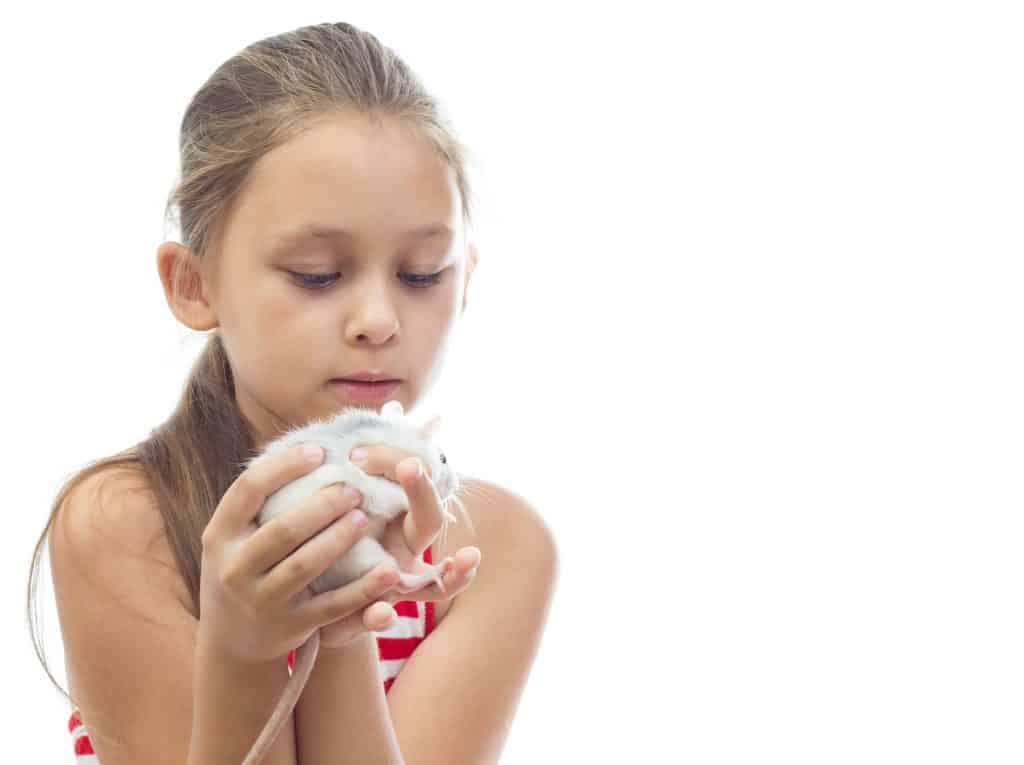 little girl holding a pet rat