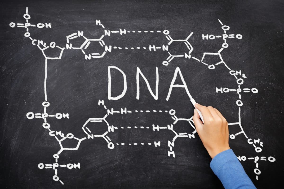DNA calculations on a chalkboard