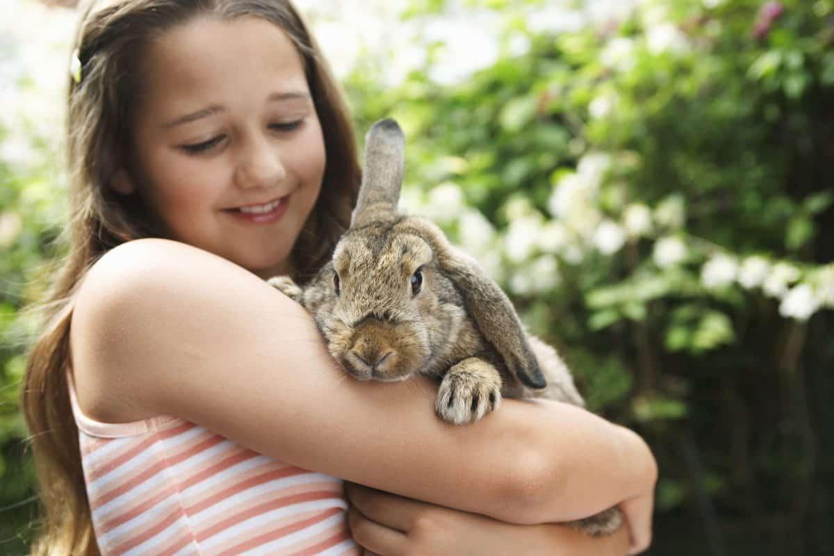 girl holding bunny rabbit